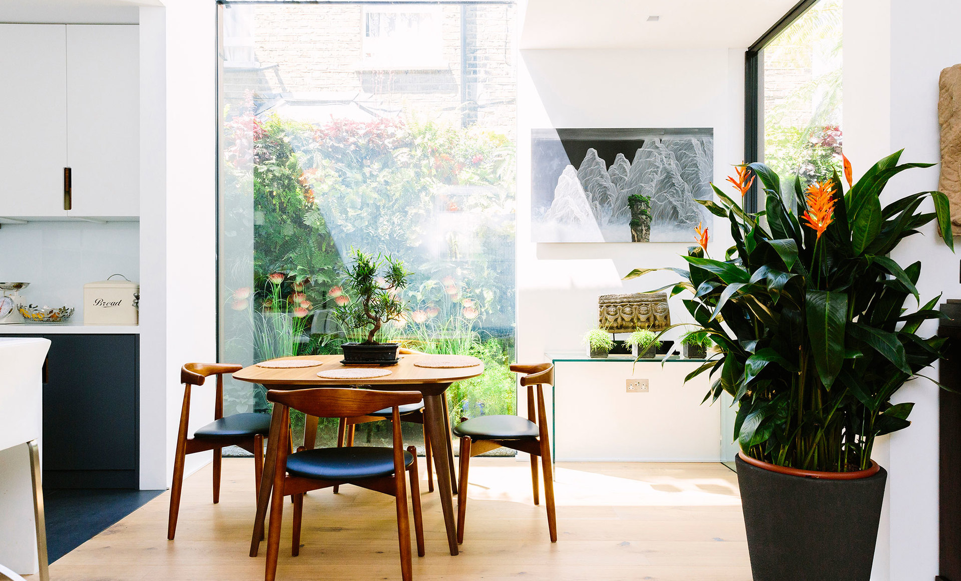 Light and bright dining room connecting the indoors and outdoors with large glazing and indoor greenery