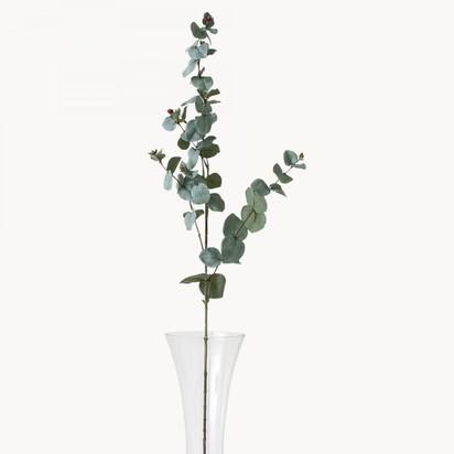 Sunbury eucalyptus dk7015 1.1603