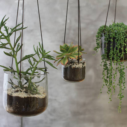 Original clear hanging planter