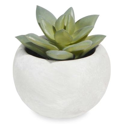 Potted artificial mini succulent 1000 0 16 166804 1