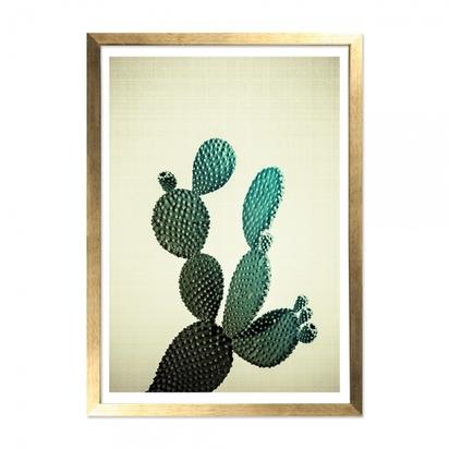 Cult living california cactus art print framed poster cream a2 p13723 169033 image